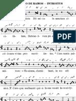 Proprium de Dominica in Palmis de Passione Domini