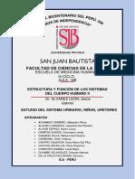 MONOGRAFÍAS SEMINARIO ANATOMÍA MB III CICLO