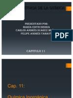 Cap_11