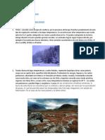 caracteristicas 7 biomas