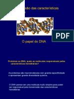 Apresentacao DNA