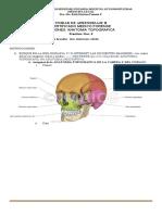 Practica 3 - Certificado Medico Forense (1)