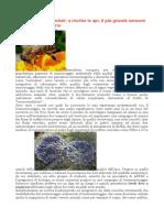 Aap Bioindicatori Ambientali