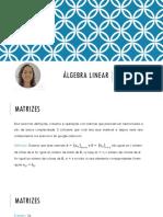 matrizes algebra