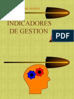 INDICADORES_DE_GESTION[1][1] (1)