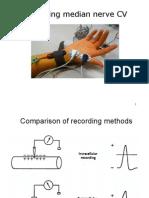 Human_neurophysiology1
