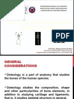 Anatomia do Sistema Esquelético