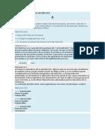 DERECHO PROCESAL PENAL ARGENTINO - PREGUNTERO UNIFICADO-fusionado