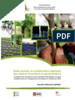 Guide-pratique-multiplication-végétative