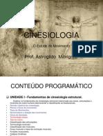 Aula disciplina Cinesiologia 04