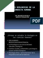 Bases+biológicas+de+la+conducta+humana