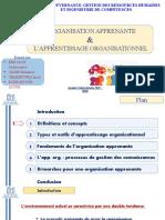 Exposé organisation apprenante et apprentissage org version finale