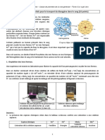 1-PC-2020-Sujet0-FerSang-10pts