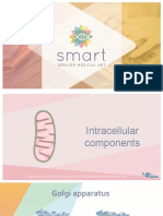 Intracellular Components