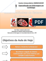 Aula - Anatomia Cardíaca