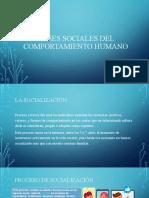 03. Bases Sociales Del Comportamiento Humano