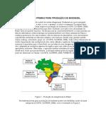 Produção de Biodiesel - Materiais e Métodos