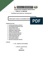 PROYECTO DERIVADOS DE PIÑA