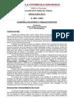 Apunte Apicultura 8° año - 2011 - EVDB