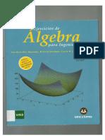 Idoc.pub Ejercicios de Algebra Para Ingenieros Original (1)
