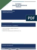SISTEMA DE GESTION DE RIESGO