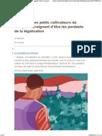 [Le Monde] Au Maroc les petits cultivateurs de marijuana craignent d'être les perdants de la légalisation