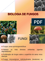 Características morfológicas de fungos 2015