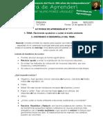 ACTIVIDAD  17  Tutoria (1) (1)
