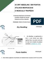Slide Dry Needling Novo