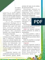 Revista Naturalia nr 9 partea 2