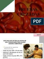PRUEBAS CRUZADAS