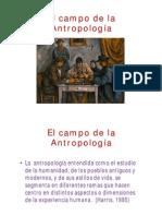 Ramas_antropologicas