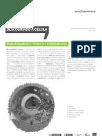 protocolo-alunoscelula