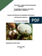 Plagas Del Algodonero 2021