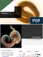 Zoologia Dos Invertebrados - Annelida