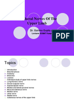 Peripheral Nerves of UL by Garima