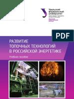 Развитие_топочных_технологий_в_российской