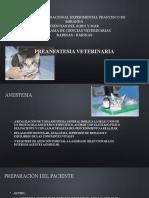 diapositivas anestesia