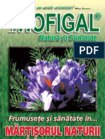 Revista_Hofigal_nr_10