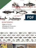 9 Acuic Ana García - Impacto Ambiental Positivo de La Maricultura de Peces_opt