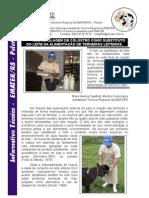 Informativo Técnico Regional sobre Silagem de Colostro