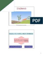 02  ENZIMAS