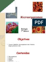 microorganismos_7mo