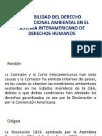 EXIGIBILIDAD DEL DERECHO INTERNACIONAL AMBIENTAL EN EL SISTEMA INTERAMERICANO DE DERECHOS HUMANOS