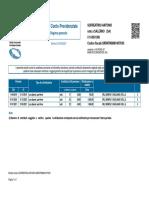 SRRNTN96M14H703H (1)
