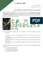 Ficha_de_DNA_e_sintese_proteica_-_correccao