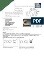 prtesisparcialfij1-140621131335-phpapp01