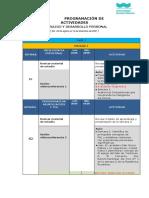 MODELO DE PROGRAMACION DE ACTIVIDADES 2021-2