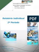 Relatório Individual Sara Machado