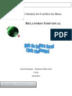 Relatório individual Ap João Ramalho